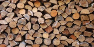 Timber Logs